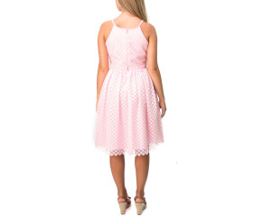 Anou Pink Lace Dress