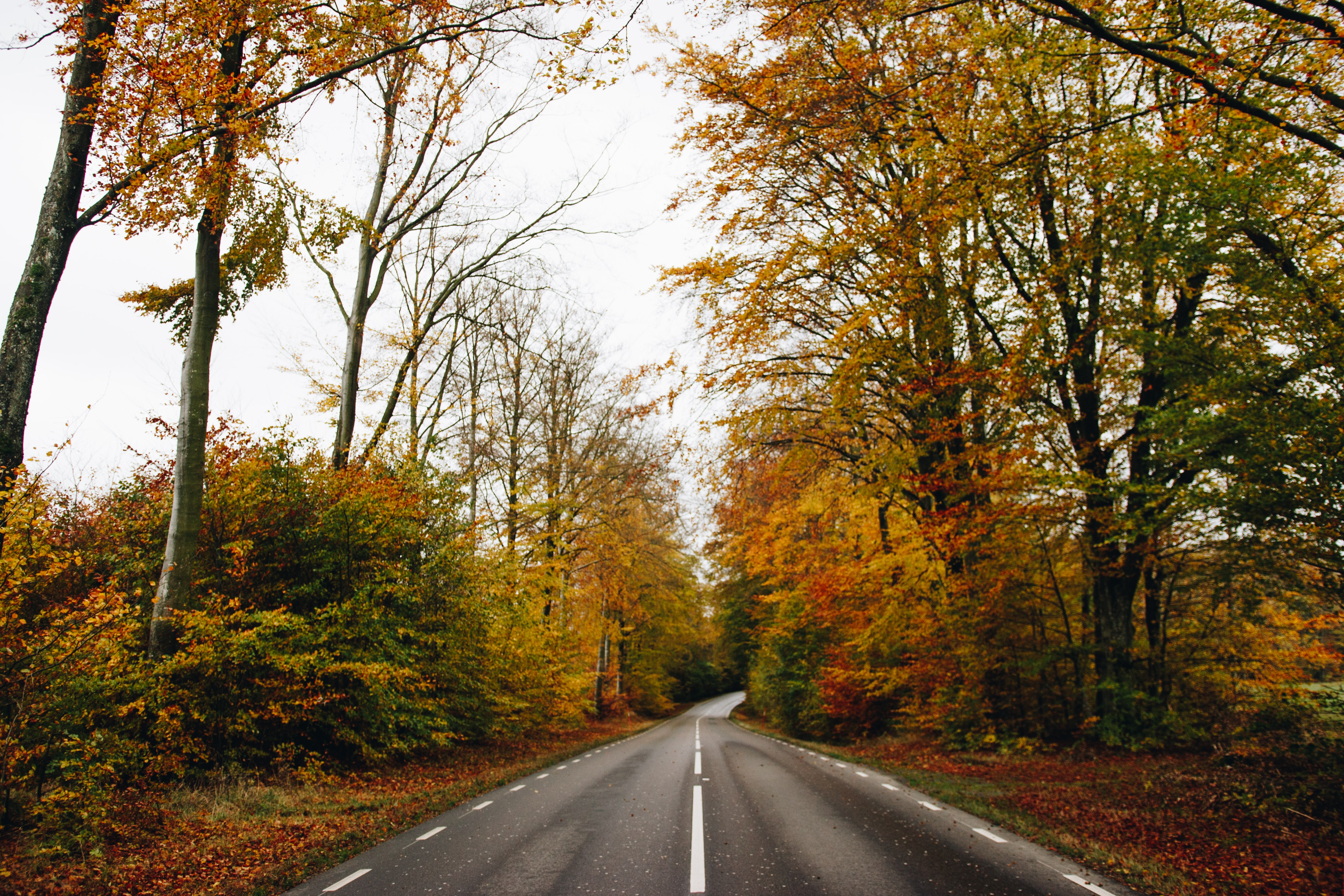 5 Best Places to See Fall Colors